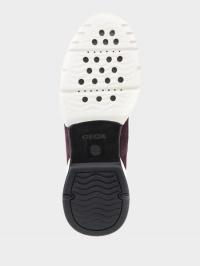 Кроссовки для женщин Geox D SFINGE XW3731 купить обувь, 2017