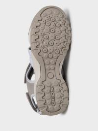Сандалі  жіночі Geox D BOREALIS D02DWA-0AU14-C1303 ціна взуття, 2017