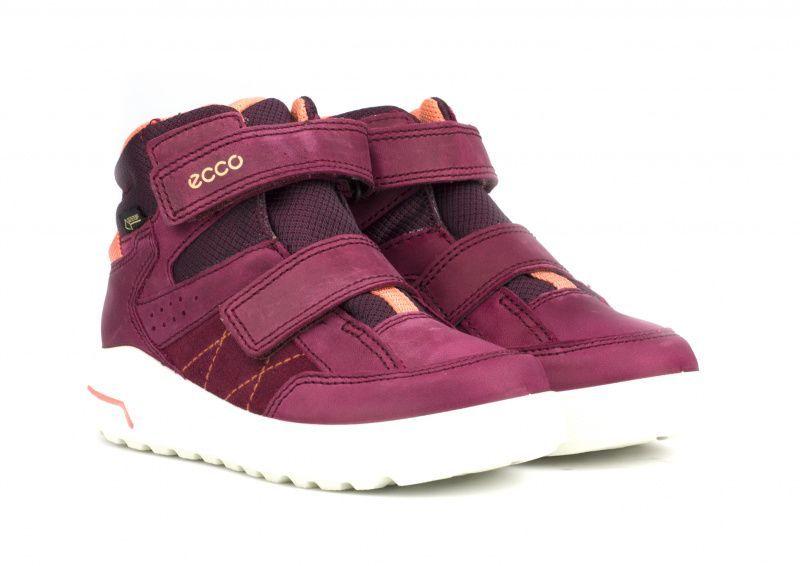 ECCO Ботинки  модель ZK2961 цена обуви, 2017