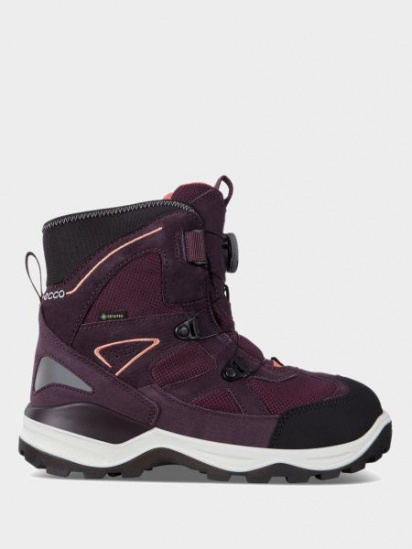 Сапоги для детей ECCO SNOW MOUNTAIN ZK3419 размеры обуви, 2017