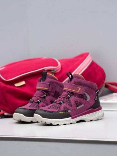 Ботинки детские ECCO URBAN HIKER ZK3457 брендовая обувь, 2017