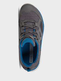 Кросівки  дитячі ECCO BIOM TRAIL KIDS 702753(00244) брендове взуття, 2017