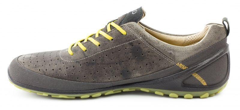 ECCO Кроссовки  модель ZM2932 размеры обуви, 2017