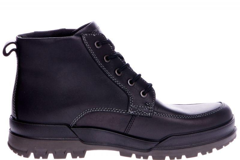 Купить Ботинки мужские ECCO TRACK 6 ZM3146, Черный