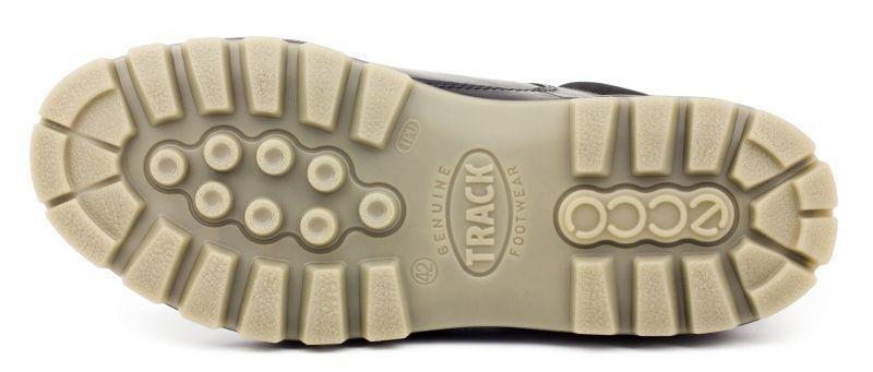 Ботинки для мужчин ECCO TRACK II ZM3289 продажа, 2017