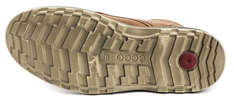ECCO Ботинки  модель ZM3316, фото, intertop