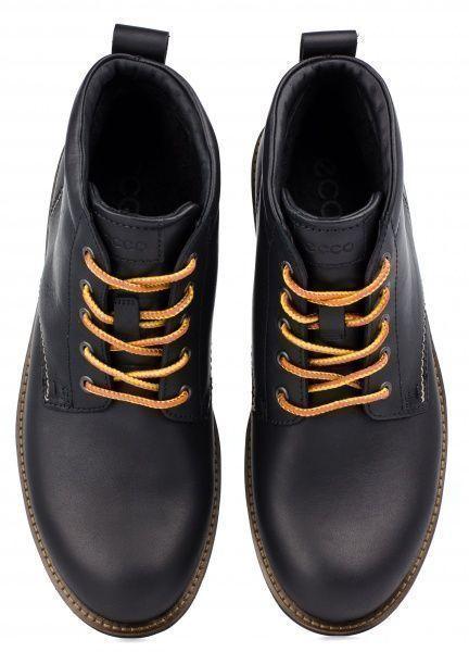 Ботинки мужские ECCO HOLBROK ZM3318 цена обуви, 2017