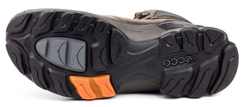 ECCO Ботинки  модель ZM3341, фото, intertop