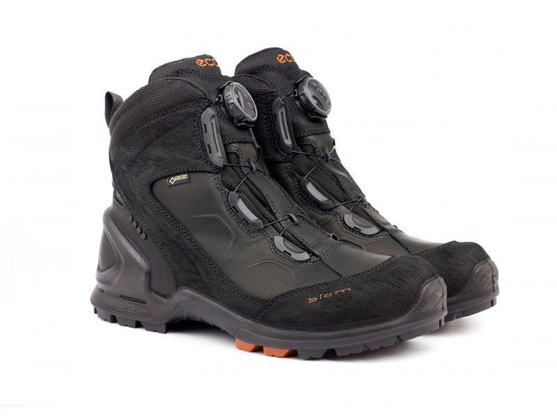 Ботинки мужские ECCO BIOM TERRAIN ZM3345 цена обуви, 2017