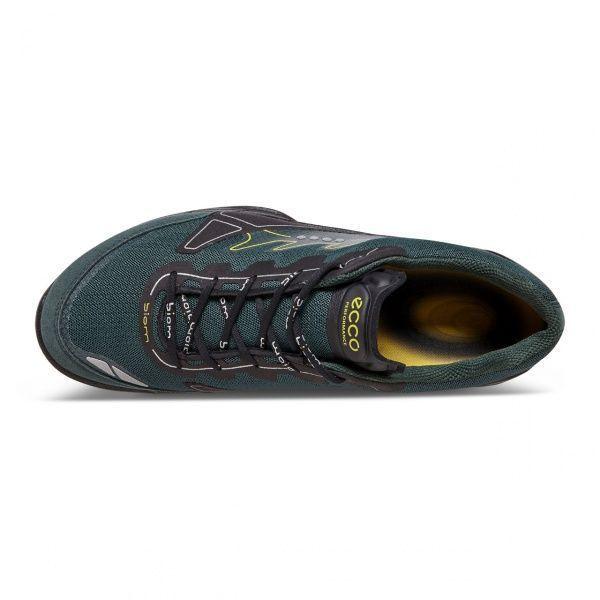 Кроссовки мужские ECCO BIOM TRAIL FL MEN'S ZM3541 цена обуви, 2017