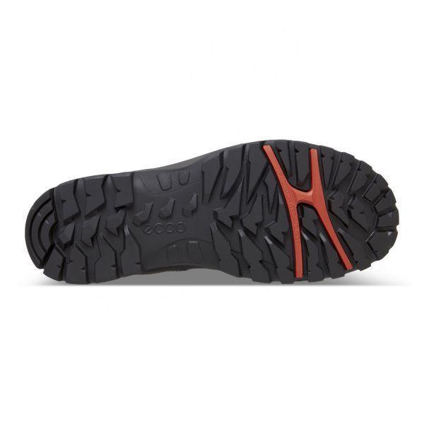 Полуботинки для мужчин ECCO XPEDITION  III MEN ZM3579 модная обувь, 2017