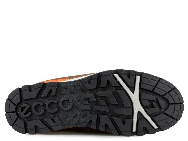 Ботинки для мужчин ECCO OREGON ZM3738 цена обуви, 2017