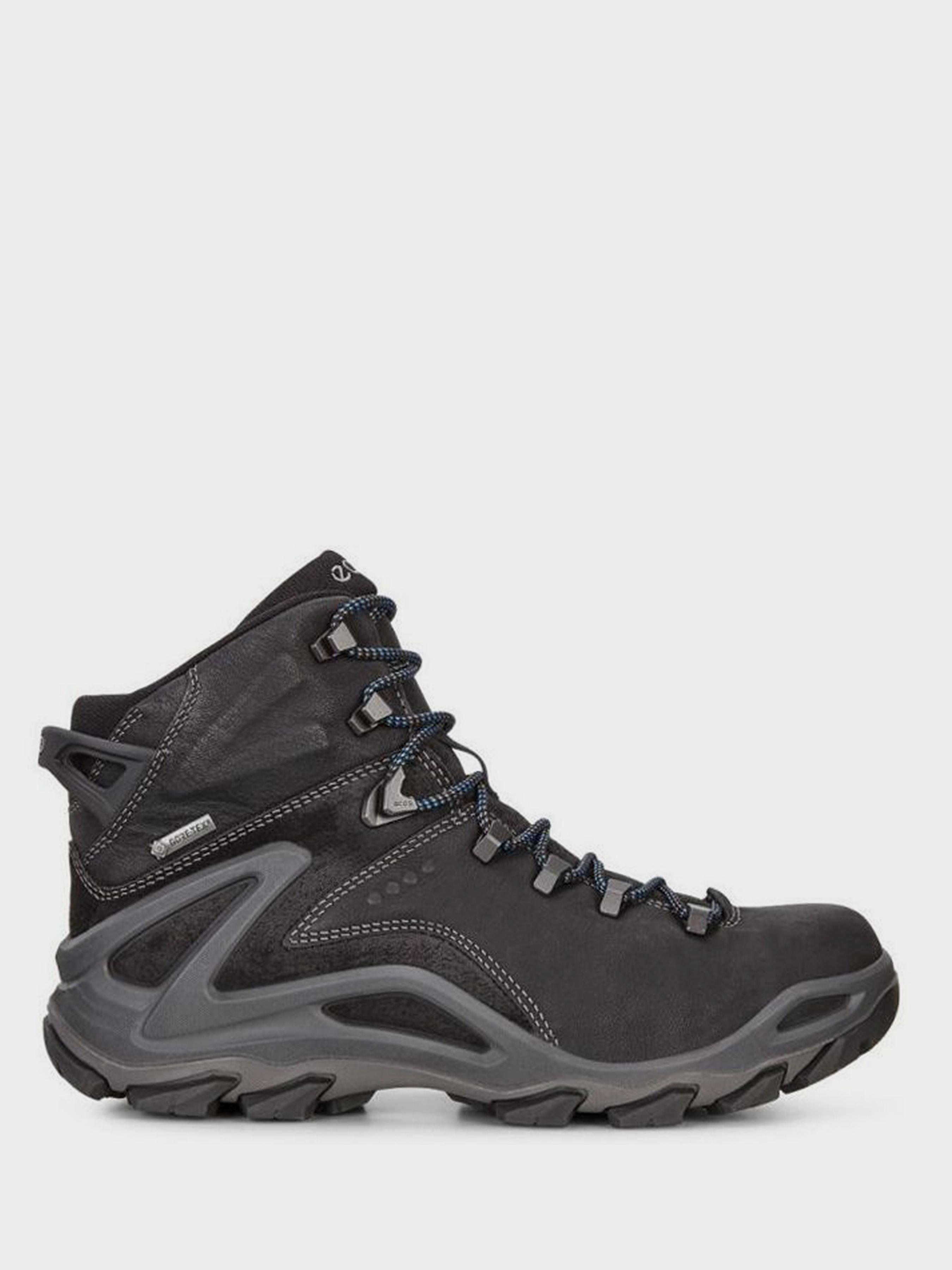 Купить Ботинки мужские ECCO TERRA EVO ZM3790, Черный