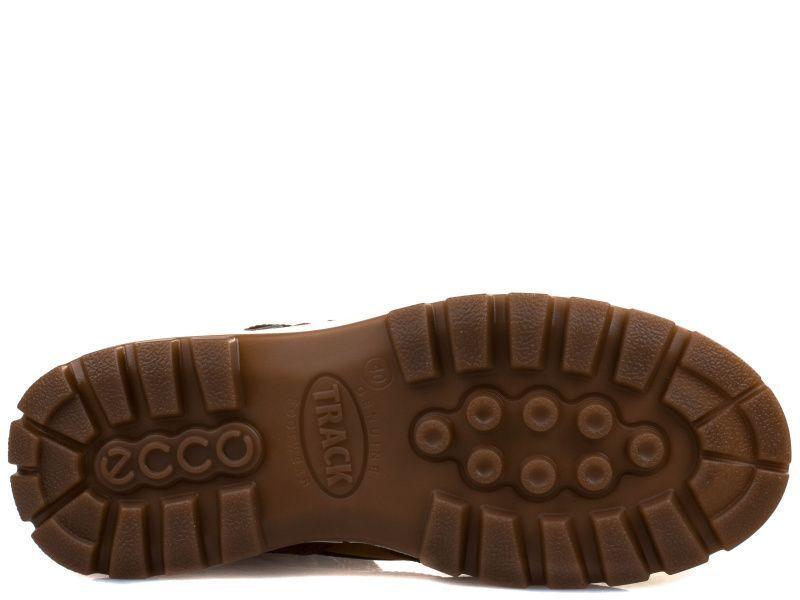 Ботинки для мужчин ECCO TRACK 25 ZM3809 примерка, 2017