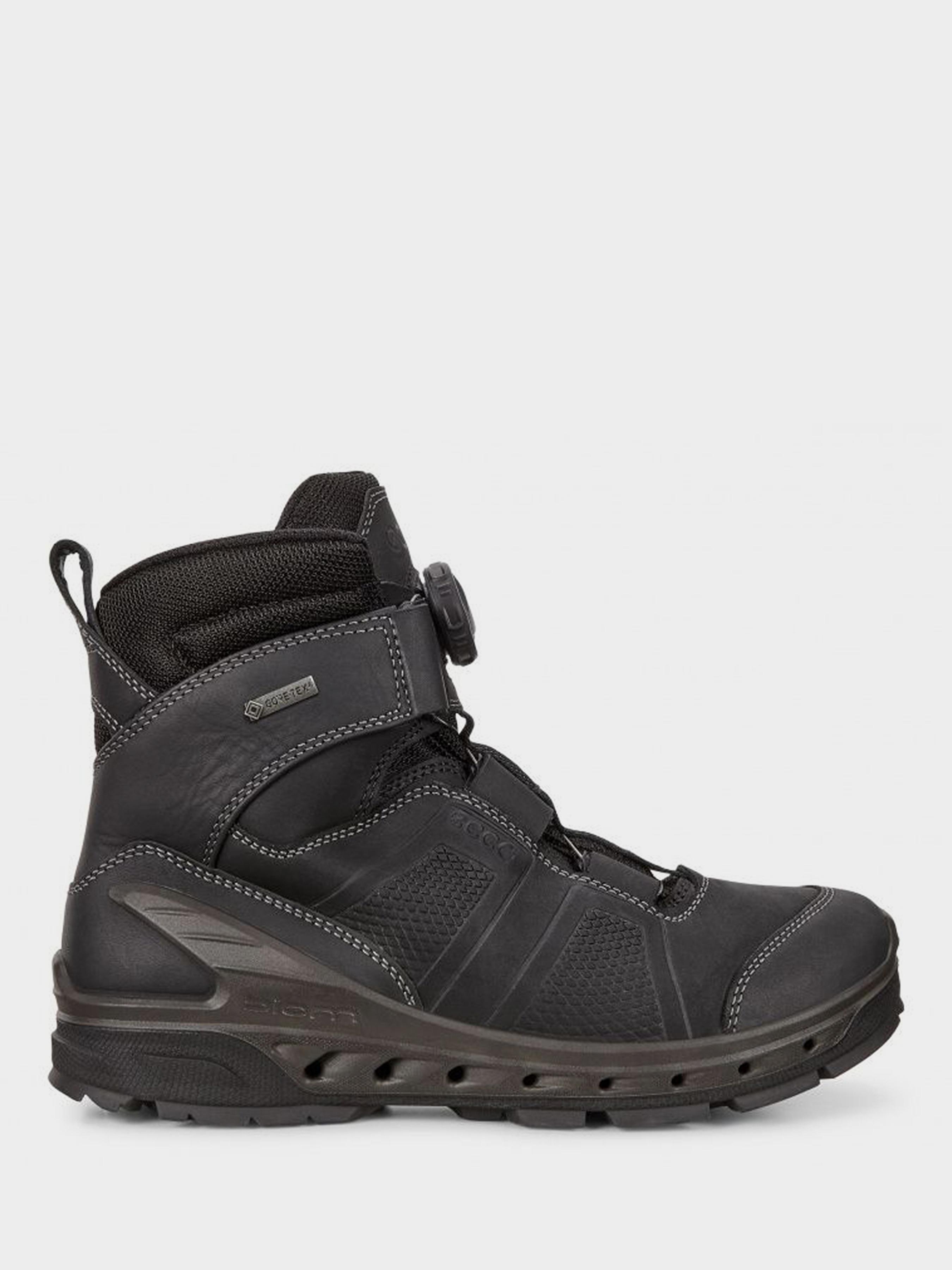 Купить Ботинки мужские ECCO BIOM VENTURE TR ZM3984, Черный