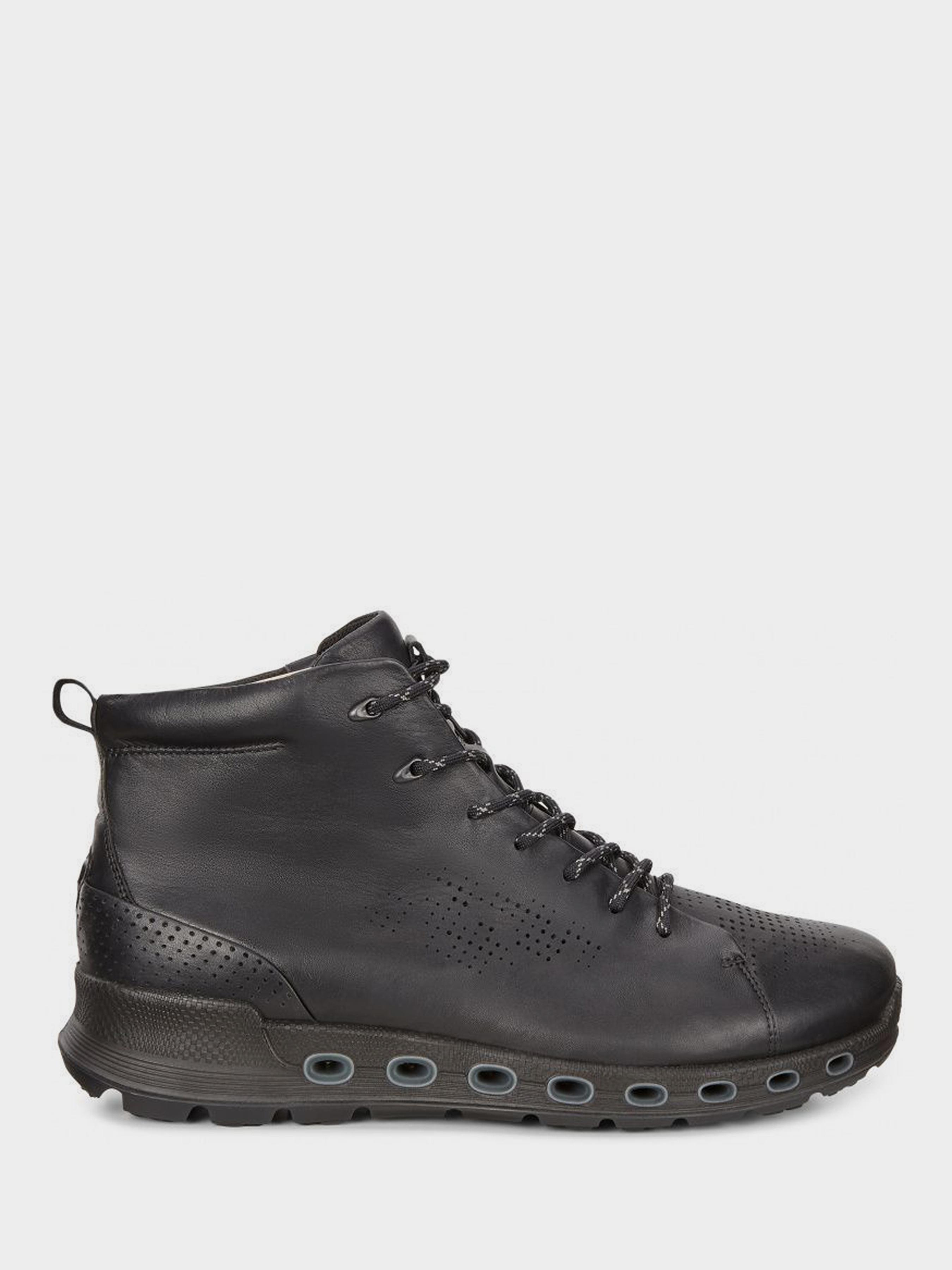 Купить Ботинки мужские ECCO COOL 2.0 ZM3985, Черный