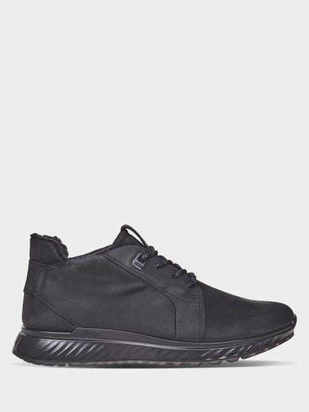 Купить Ботинки мужские ECCO ZM4288, Черный