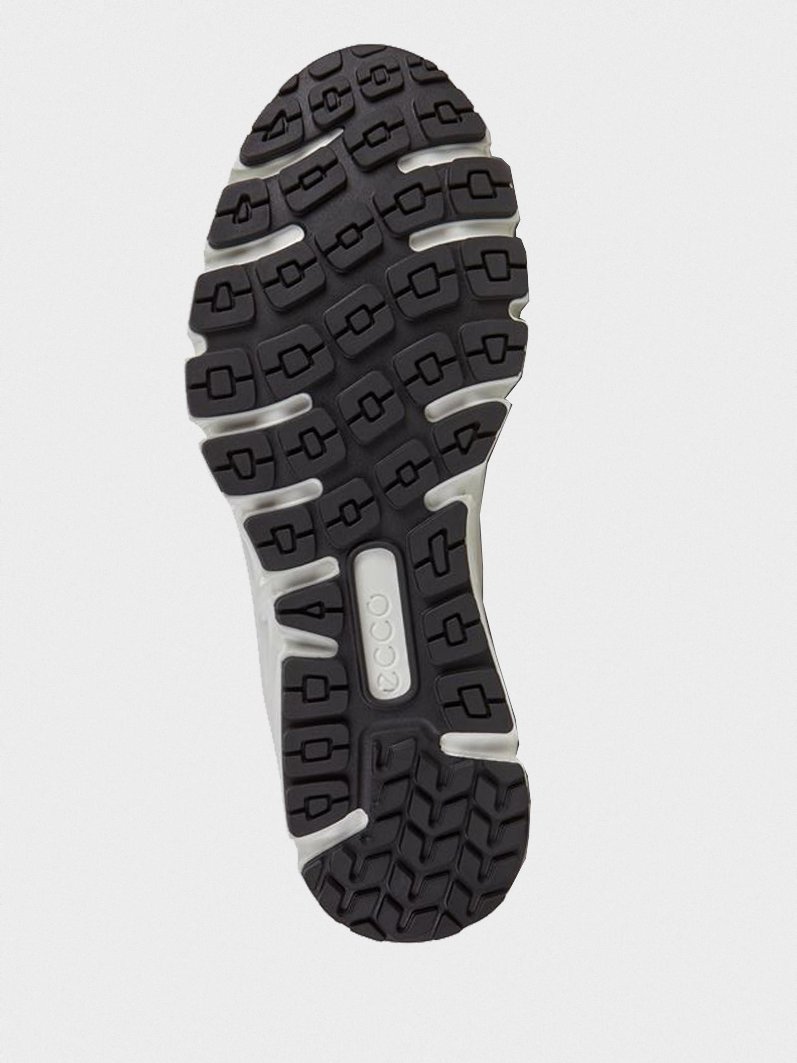 Кросівки  чоловічі ECCO MULTI-VENT M 880124(01007) ціна взуття, 2017