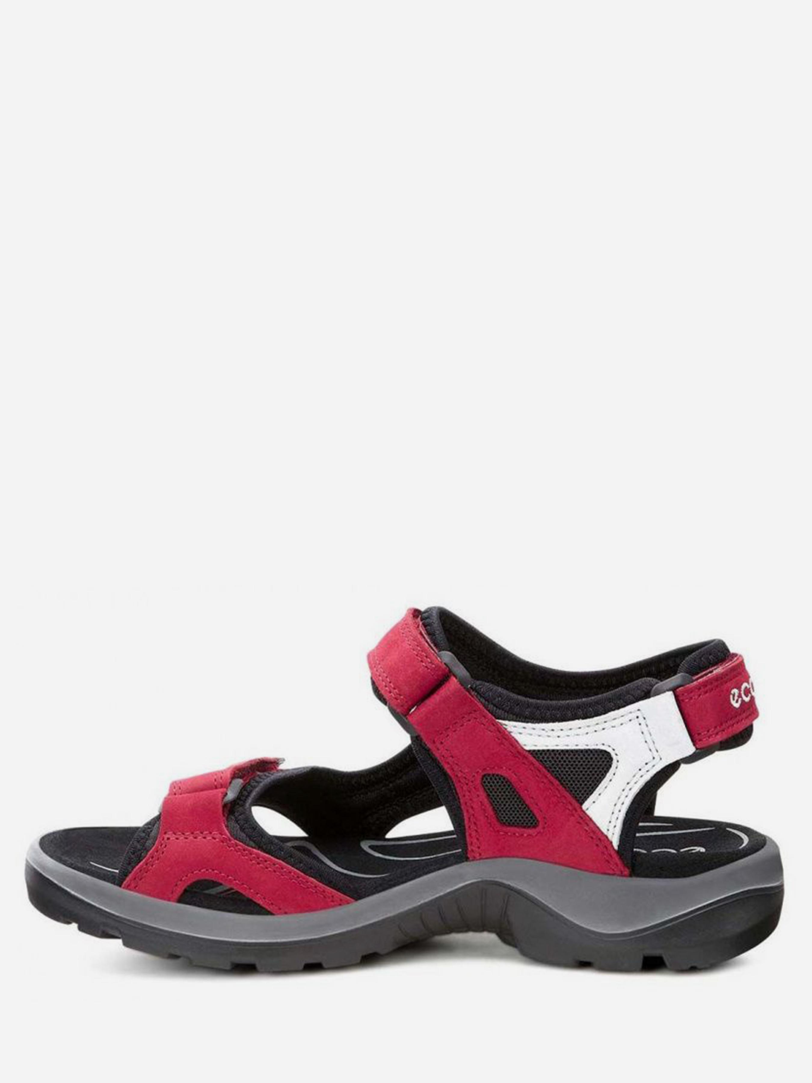 Сандалі  жіночі ECCO 069563(55287) розміри взуття, 2017