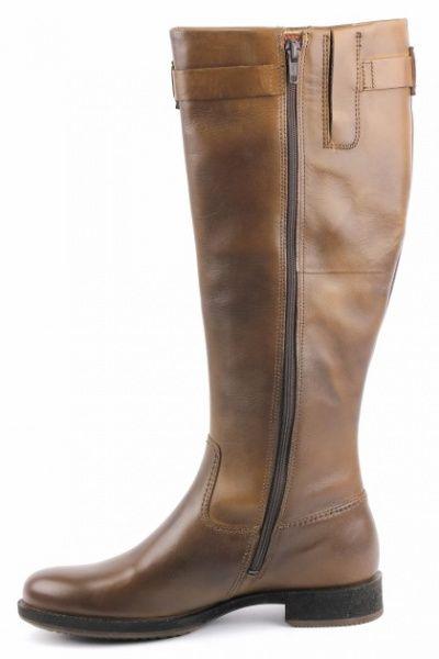 Сапоги женские ECCO ZW4606 цена обуви, 2017