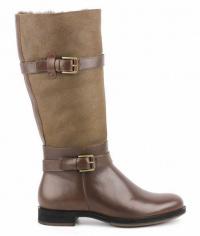 Чоботи  жіночі ECCO Saunter 234623(55778) брендове взуття, 2017
