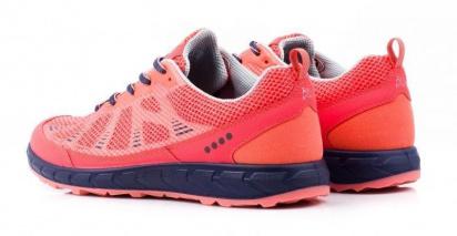 Кросівки  жіночі ECCO TERRATRAIL 803503(59423) фото, купити, 2017