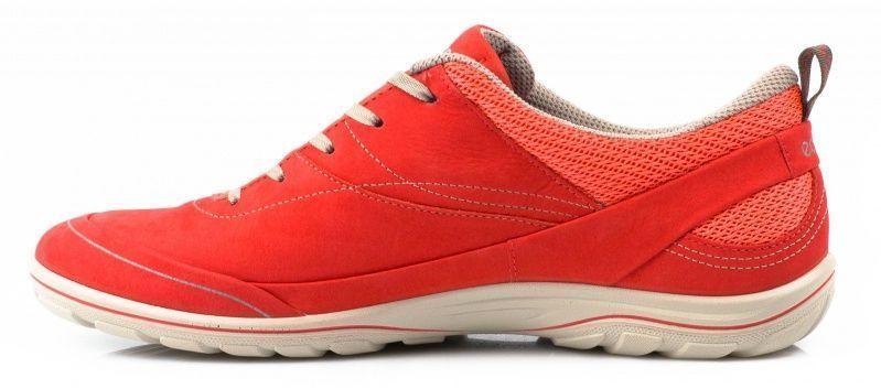Кроссовки женские ECCO ARIZONA ZW5338 брендовая обувь, 2017