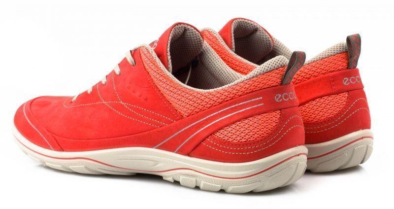 Кроссовки женские ECCO ARIZONA ZW5338 размерная сетка обуви, 2017