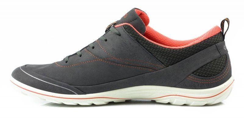 Кроссовки женские ECCO ARIZONA ZW5339 брендовая обувь, 2017
