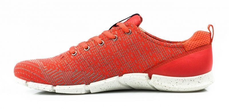 ECCO Кроссовки  модель ZW5362 размеры обуви, 2017