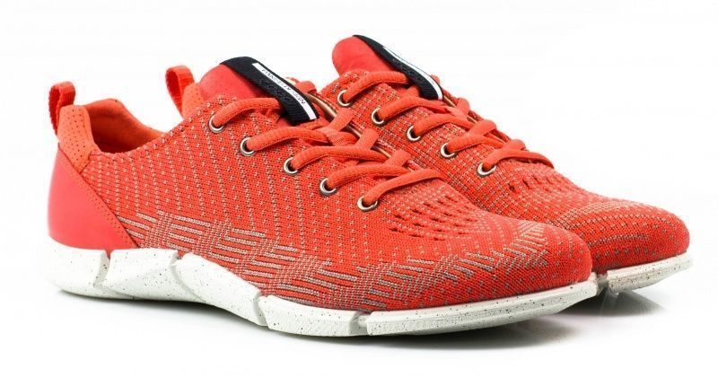 жіночі кросівки ecco intrinsic karma ZW5362 текстильні