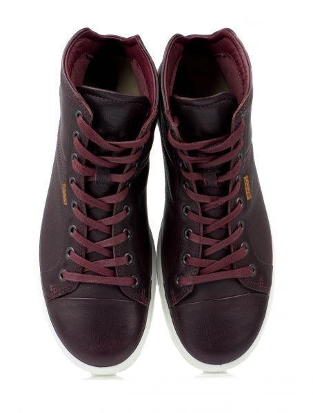 Ботинки для женщин ECCO SOFT 7 LADIES ZW5381 размеры обуви, 2017
