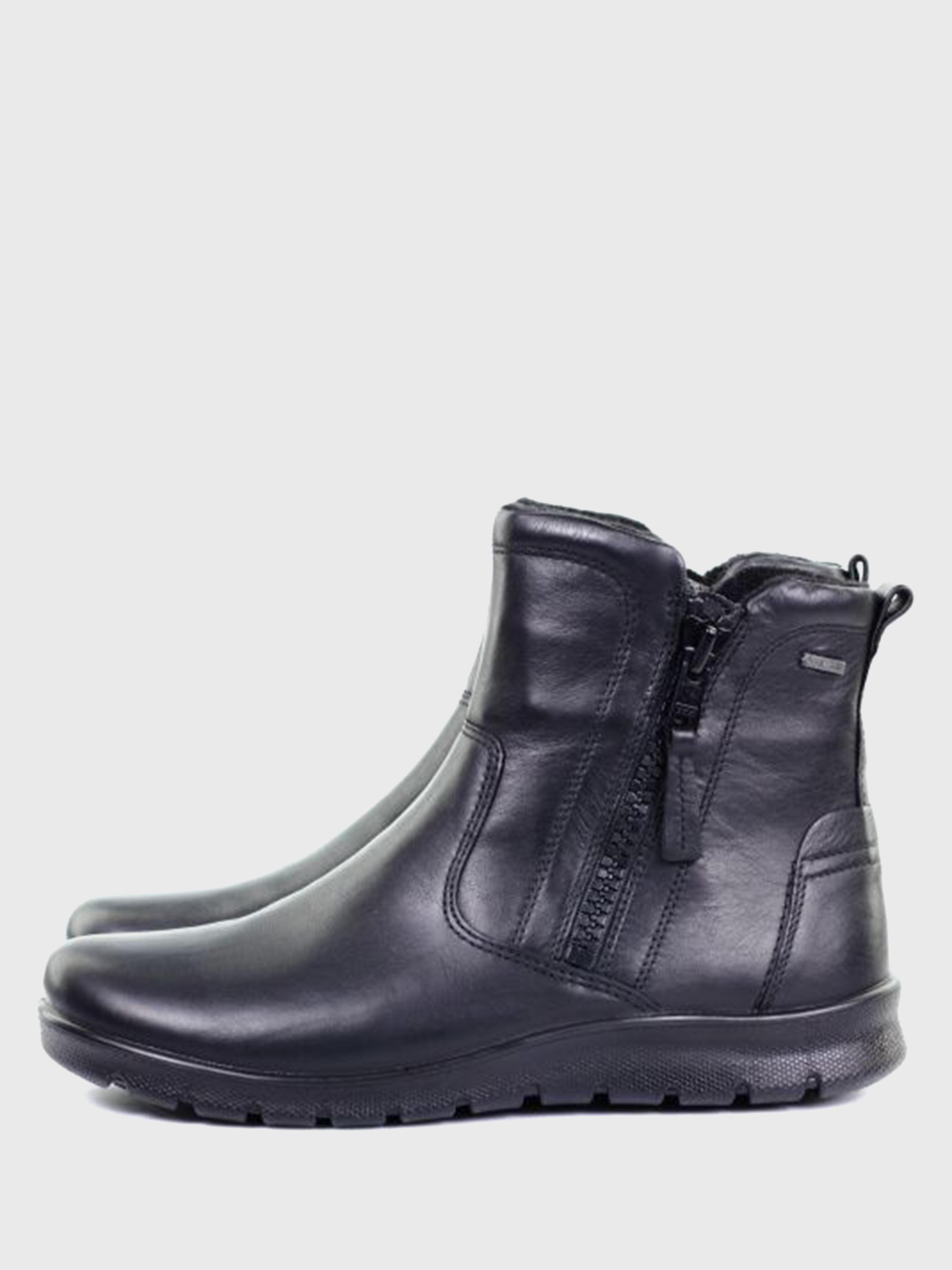 Ботинки женские ECCO BABETT BOOT ZW5422 размеры обуви, 2017