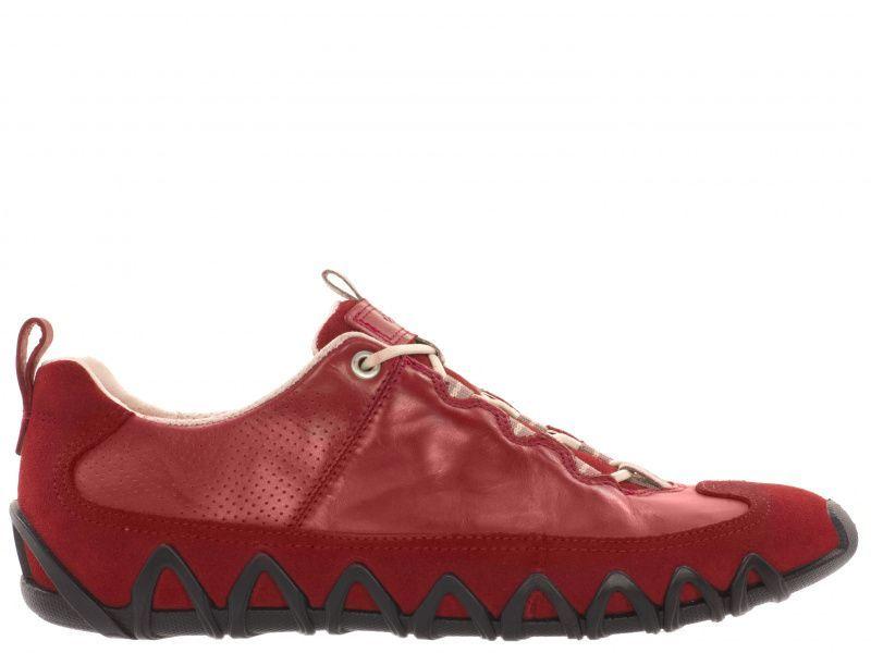 Кроссовки для женщин ECCO DAYLA 235623(55183) смотреть, 2017