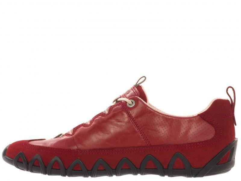 Кроссовки для женщин ECCO DAYLA 235623(55183) купить в Интертоп, 2017