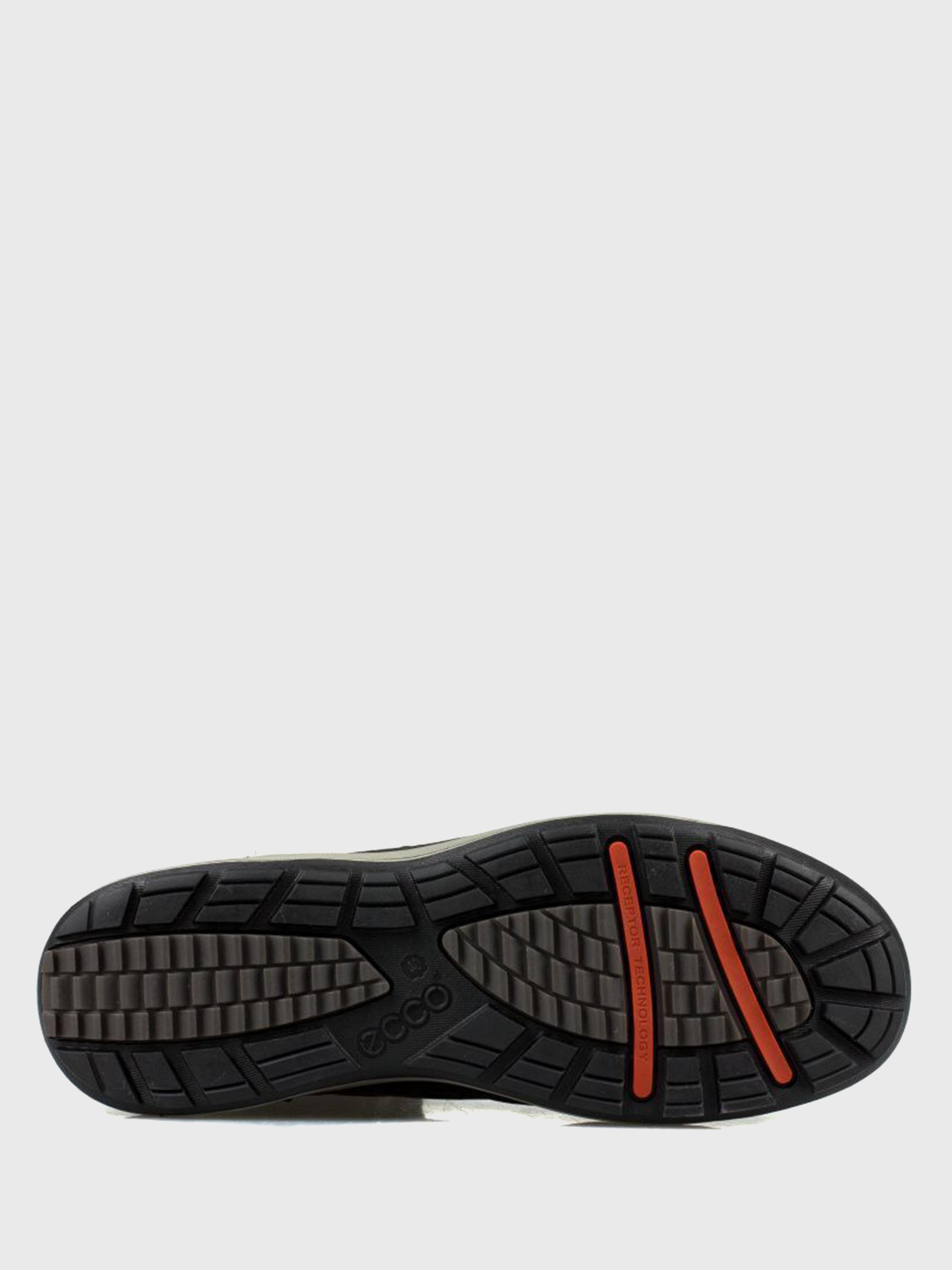 Сапоги женские ECCO TRACE LITE ZW5684 купить обувь, 2017