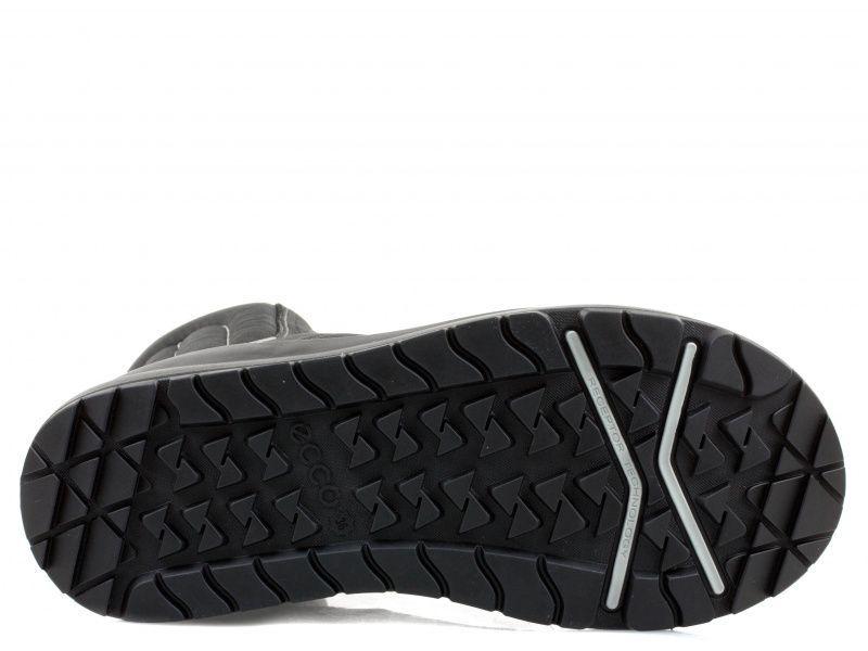 Сапоги женские ECCO WINTERLAND ZW5688 купить обувь, 2017