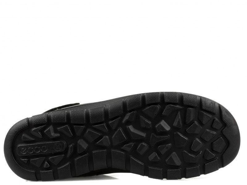Сапоги женские ECCO BABETT BOOT ZW5766 купить обувь, 2017