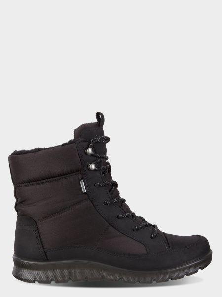 Купить Ботинки женские ECCO BABETT BOOT ZW6010, Черный