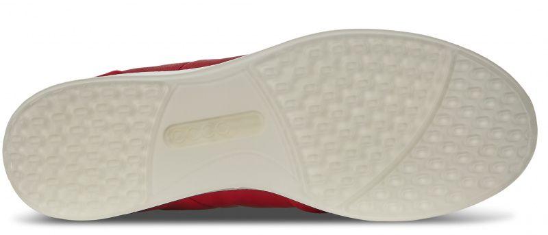 Кроссовки для женщин ECCO COOL ZW6220 купить обувь, 2017