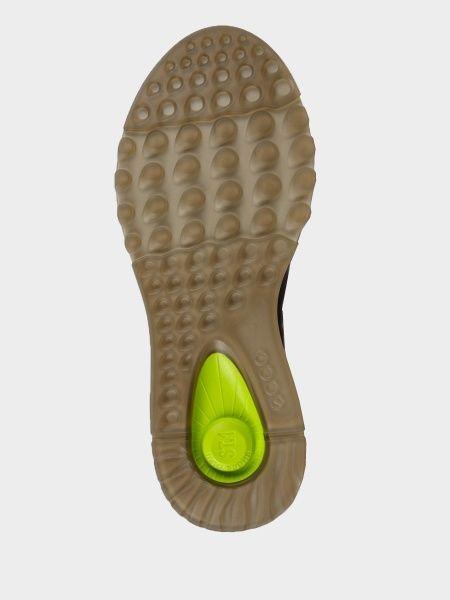 Ботинки для женщин ECCO ST.1 W ZW6403 купить обувь, 2017