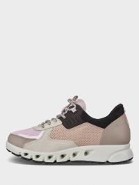 Кросівки  жіночі ECCO MULTI-VENT W 880163(51907) продаж, 2017
