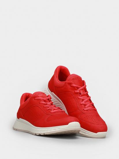 Кросівки для тренувань ECCO EXOSTRIDE модель 83531302535 — фото 2 - INTERTOP